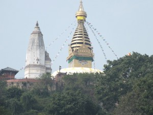 nepal10s