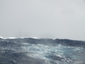 ocean-spokojny-05-small
